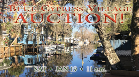 Lake Side Home Auction