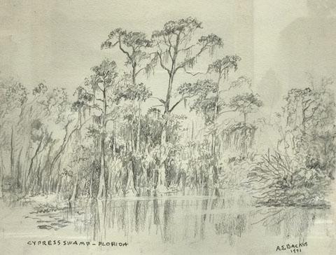 A.E. Backus